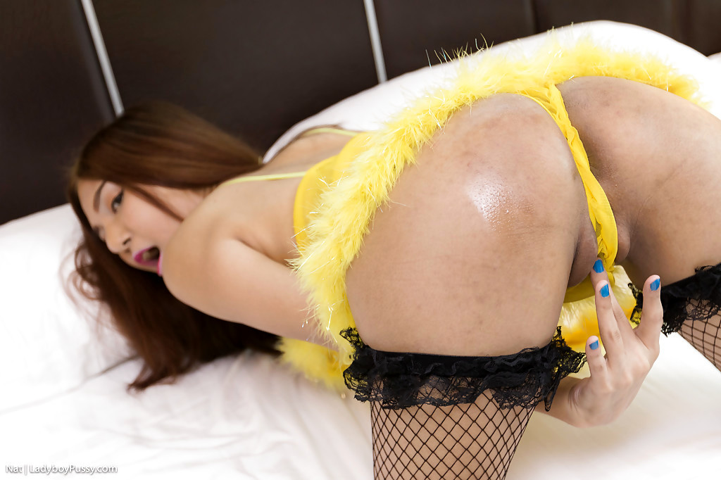 Young Thai Tranny Nat Taking A Creampie On Post Op Teen Pussy